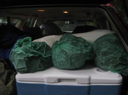 Tent wet in bags in car Prairie Creek 9-2013