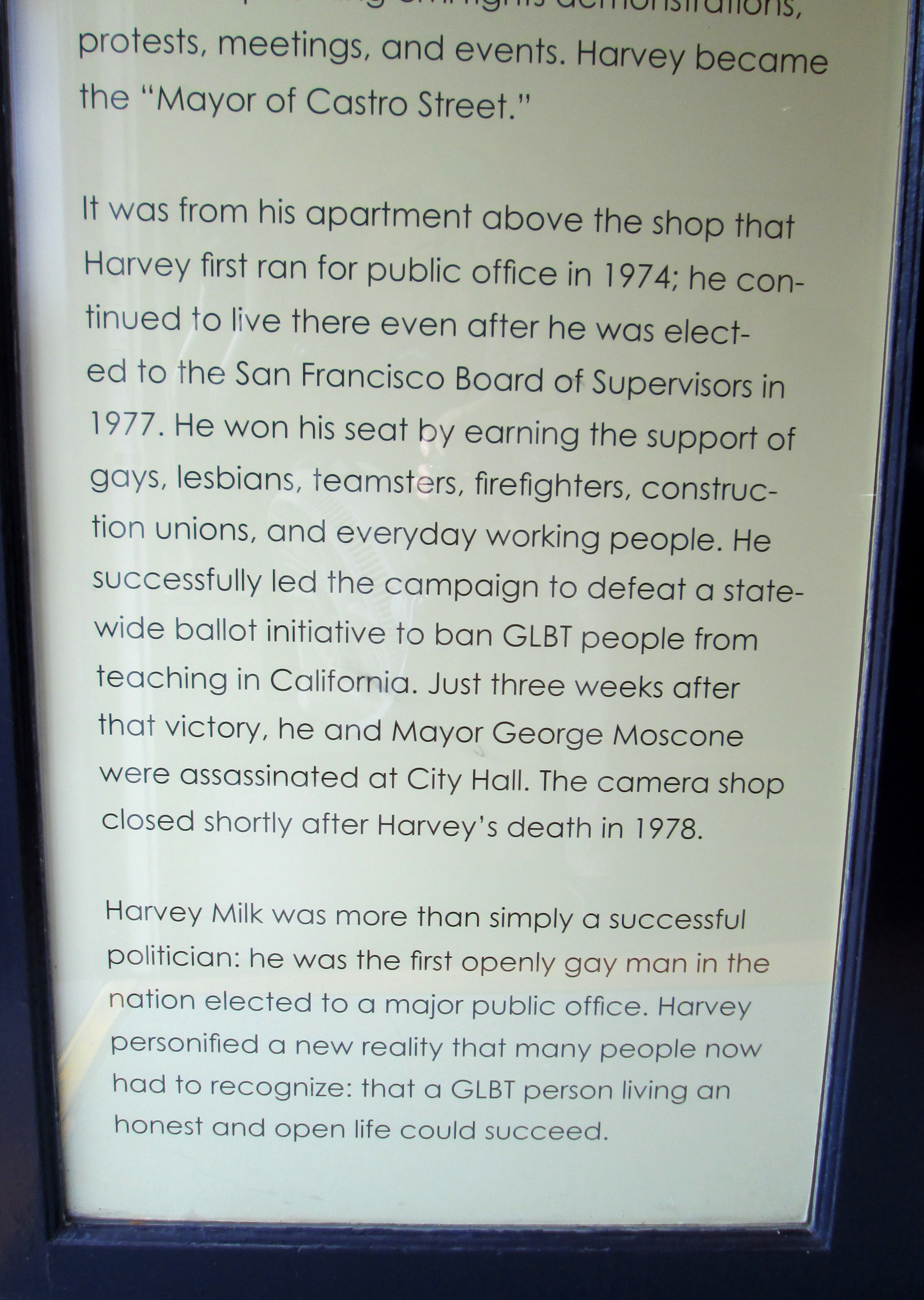 from Ali harvey milk gay movement quote