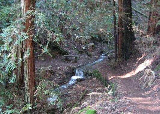 Creek on TCC Trail 1-2015