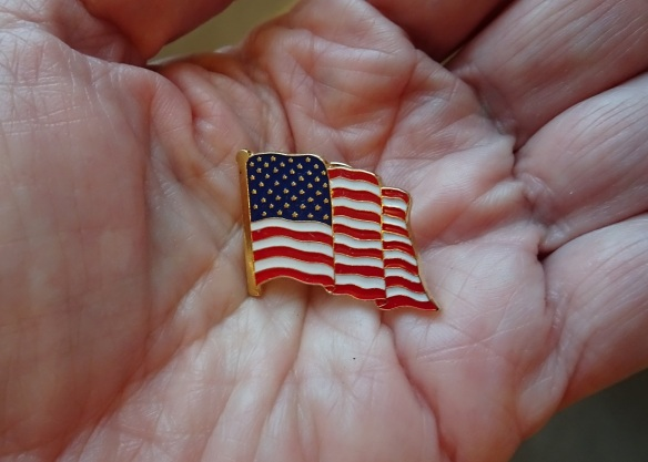 flag-lapel-in-hand-10-2016-cropped-small