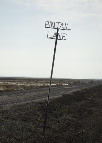 pintail-lane-sign-12-2016-small